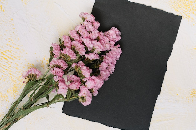 Pink flowers branches with black paper on table Free Photo
