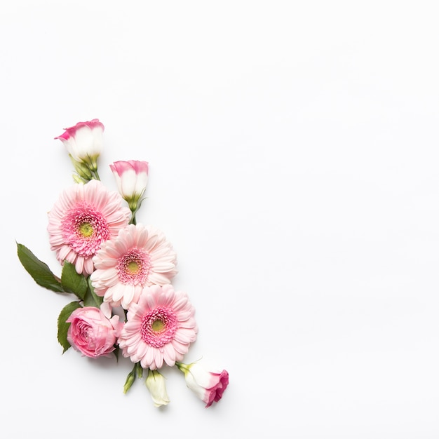 Pink flowers composition Free Photo