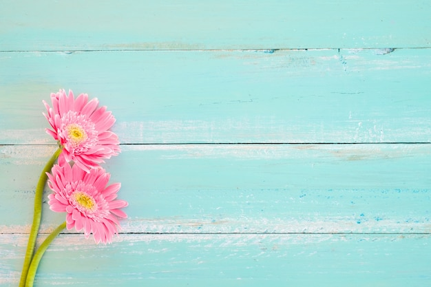Pink Flowers On Vintage Wooden In Blue Paint Background Photo