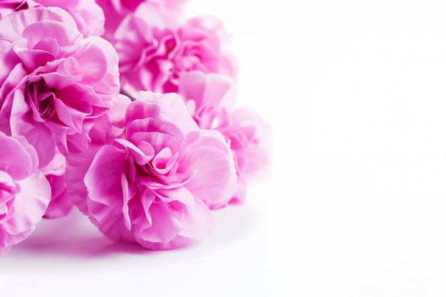 Pink flowers on a white table Free Photo