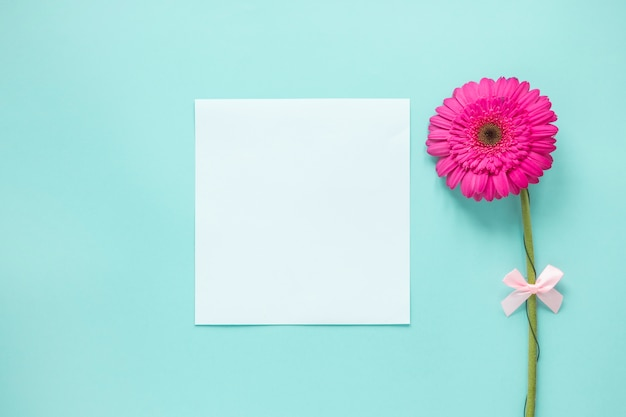 Pink gerbera flower with blank paper on table Free Photo
