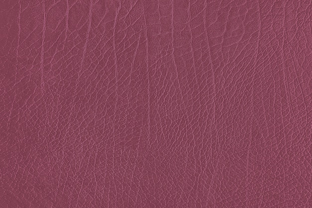 Pink leather grain texture Free Photo