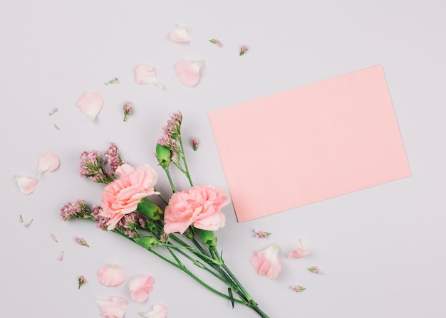 Pink limonium and carnations flower near the blank paper on white backdrop Free Photo