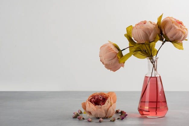 Pink peony rose flowers in glass vase on gray table Free Photo