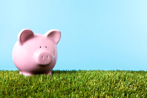 Pink piggybank over the grass Free Photo