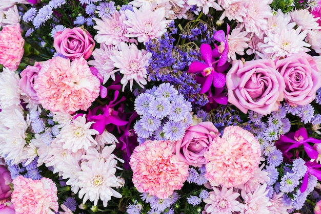 Pink And Purple Flowers Photo Free Download