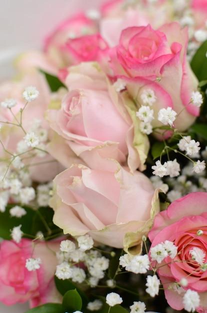 Pink rose flower arrangement on white background photo premium pink rose flower arrangement on white background premium photo mightylinksfo