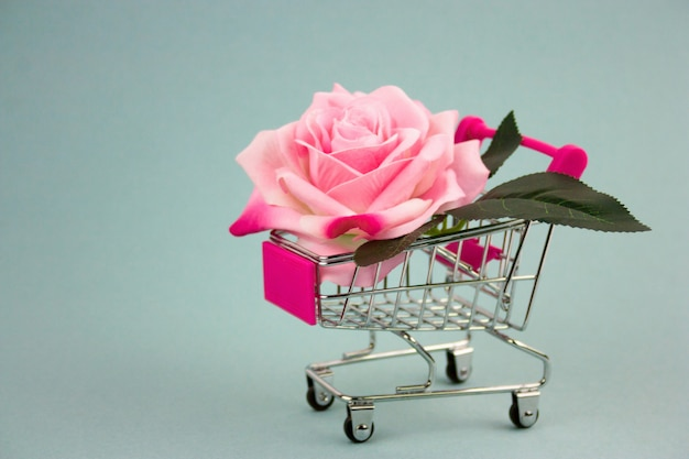 Pink rose in shopping cart on a blue background Premium Photo