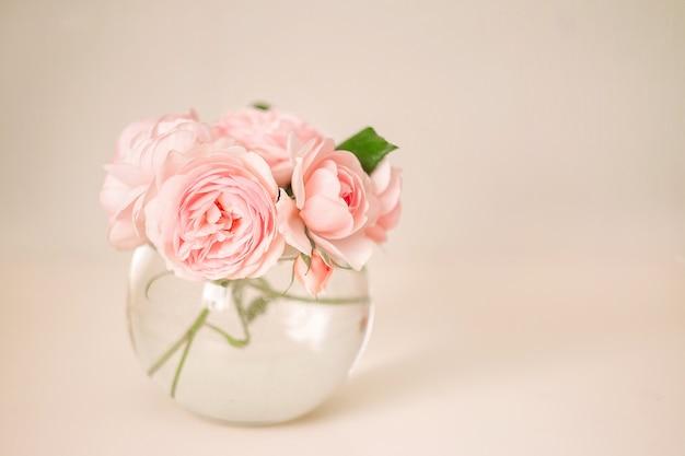 Pink rose in vase on white background Premium Photo