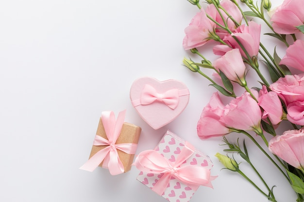 Pink roses and gift boxes on white background Free Photo