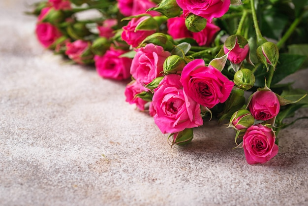 Pink roses on light background Premium Photo