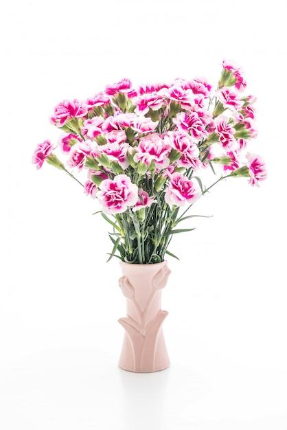 pink spring flower photo premium download