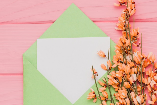 Pink surface with blank paper and floral decoration Free Photo