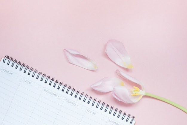 Pink tulip with open empty desk planner flat lay Premium Photo