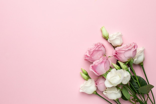 Pink and white roses flowers on pink background with copyspace. Premium Photo
