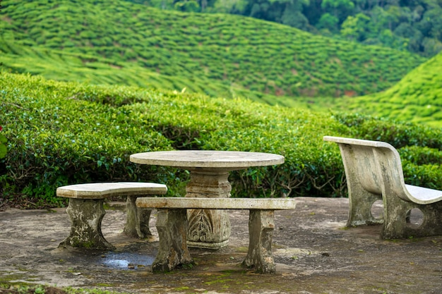 A place for relaxation and tea drinking made of stone furniture overlooking a green valley of tea bushes. Premium Photo