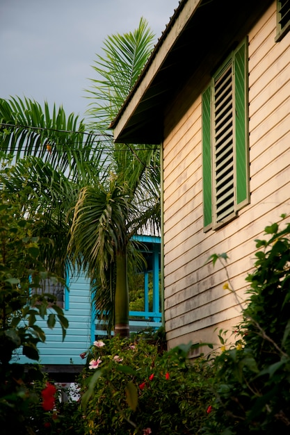 プラセンシア、住宅 Premium写真