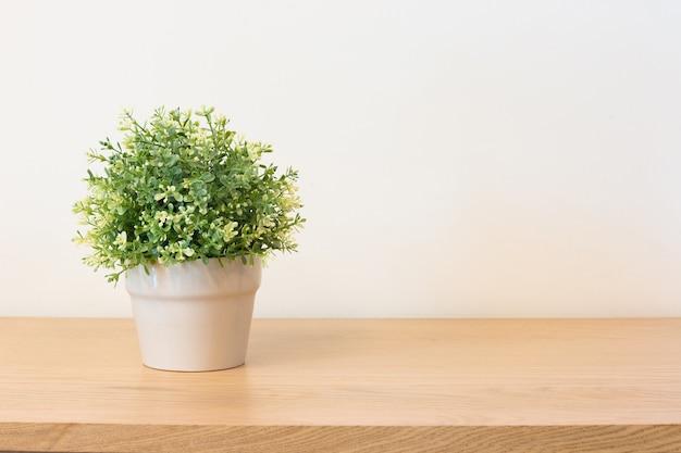 Plant on book shelf or desk. Premium Photo