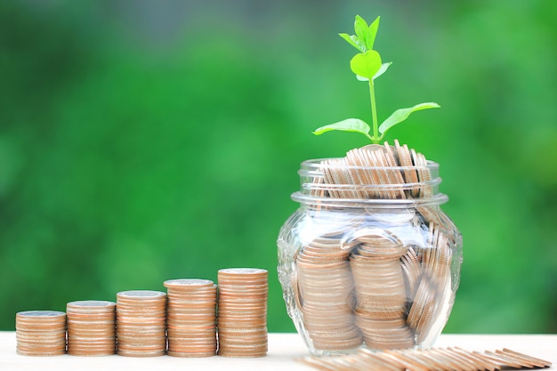 Plant growing on coins money and glass bottle on green background Premium Photo