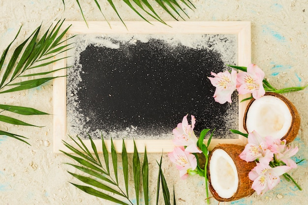 Plant leaves near coconuts and flowers among sand near blackboard Free Photo