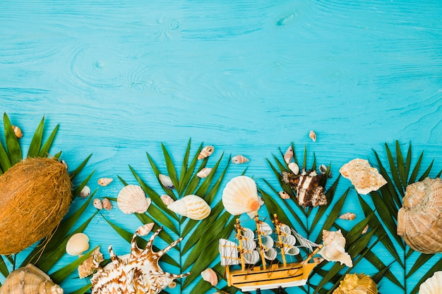 Plant leaves near fresh coconuts and seashells with toy ship Free Photo