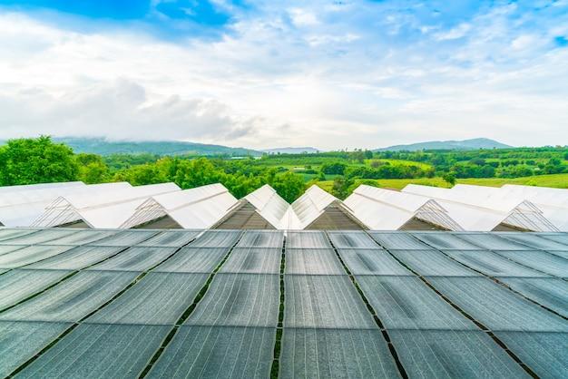 青い空と植物保育園。 無料写真