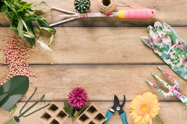 Plant; peat tray; pruner; string; flower; glove; showel; rake and seeds on brown wooden table Free Photo
