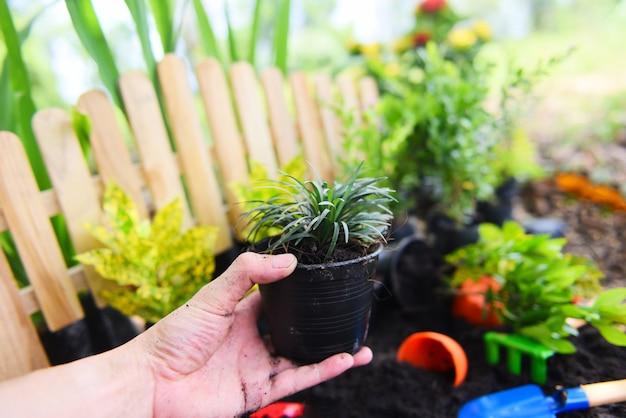 Plant pot in hand for planting in garden Premium Photo