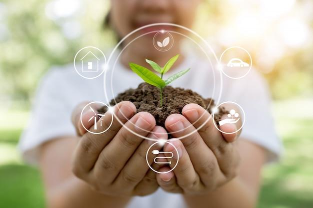 Plant tree and  innovation of save world. Premium Photo