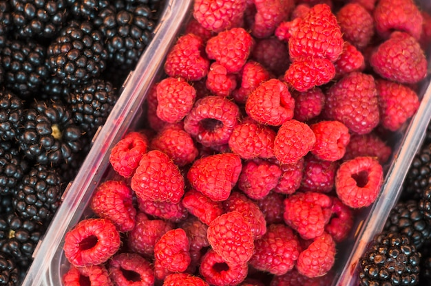 Plastic crate with red raspberries and blackberries Free Photo