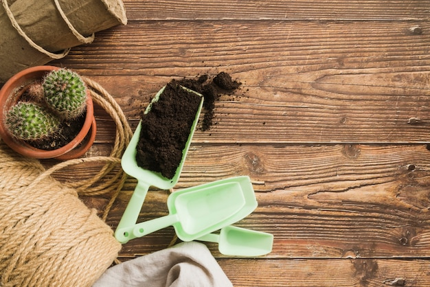 Plastic scoop with soil; cactus plant; rope spool and peat pots on wooden table Free Photo