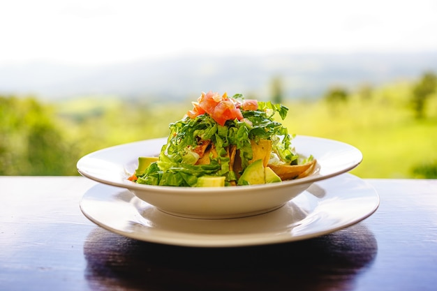 Plate with salad on a wooden table with the jungle landscape. costa rica gastronomy Premium Photo