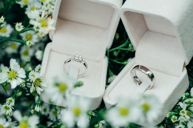Platinum couple wedding rings in open boxes place on white flowers. Premium Photo
