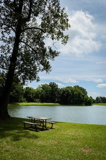 Piacevole scenario del parco con i raggi del sole che splendono nel lago Foto Gratuite