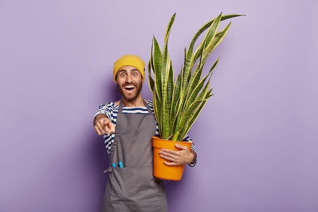 Il ragazzo con la barba lunga soddisfatto indica davanti, ha un ampio sorriso, mostra denti bianchi, porta una pianta in vaso, indossa cappello e grembiule gialli Foto Gratuite