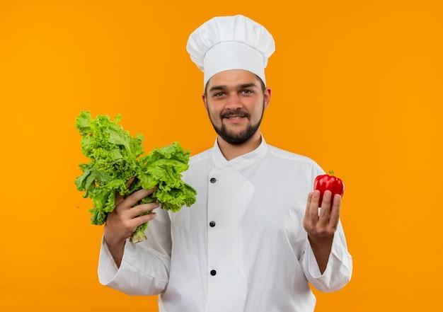 オレンジ色のスペースで隔離のコショウとレタスを保持しているシェフの制服を着た若い男性料理人を喜ばせる 無料写真