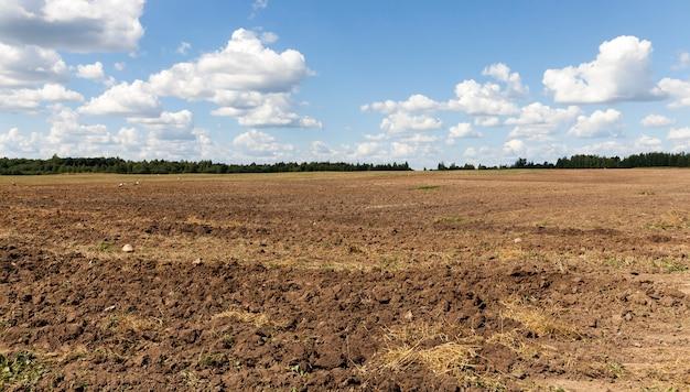 황새가 앉고 벌레 쟁기에 의해 파낸 땅에 농업 밭을 갈기 프리미엄 사진