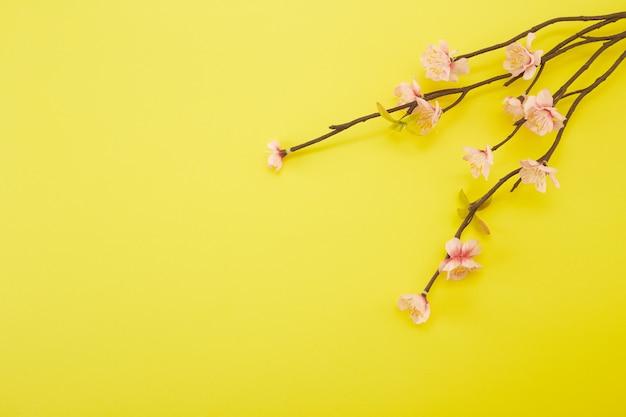 Plum flowers on yellow background Premium Photo