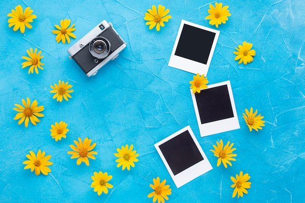 Polaroid camera and photos with spanish oyster thistle Free Photo
