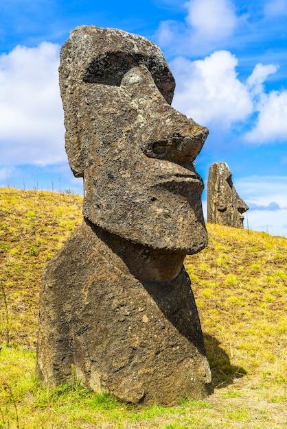 Polynesian stone statue at the rapa nui national park Premium Photo