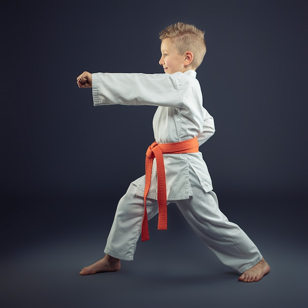 Portrait of a child with a kimono practicing karate Premium Photo