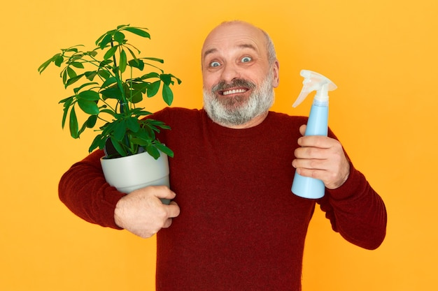 Portrait of elderly male gardener with gray beard holding spray bottle and houseplant with green leaves Free Photo