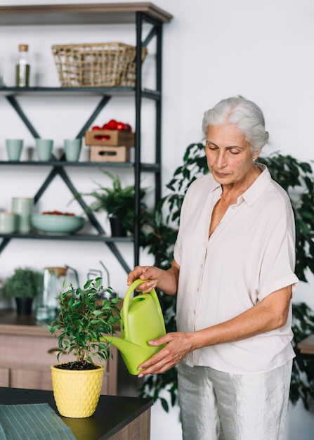 Portrait of an elderly woman watering the plants at home | Free Photo