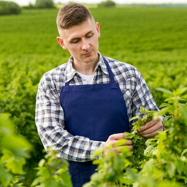 Ritratto contadino con grembiule Foto Gratuite