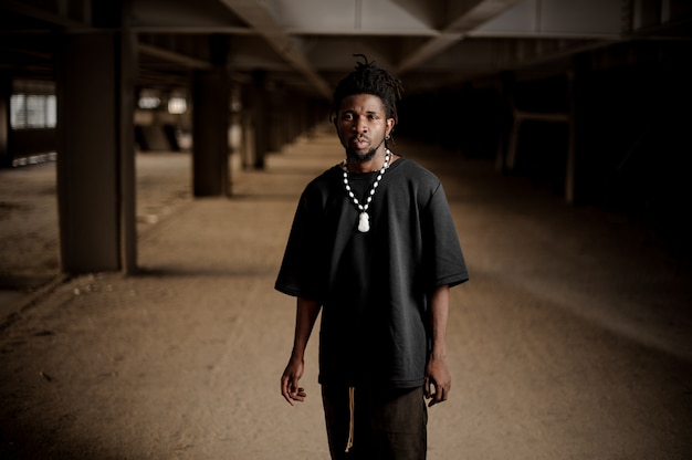 Portrait of the handsome afro american man Premium Photo