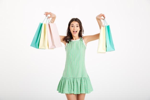 쇼핑백을 들고 드레스에 매력적인 여자의 초상화 무료 사진