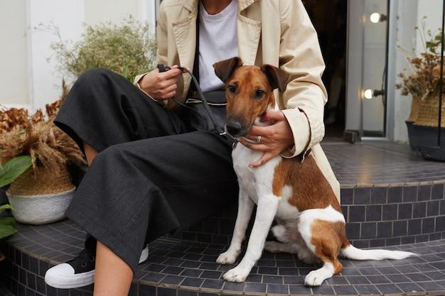飼い主の近くの階段に座っている素敵なペットの犬ジャックラッセルテリアの肖像画 無料写真