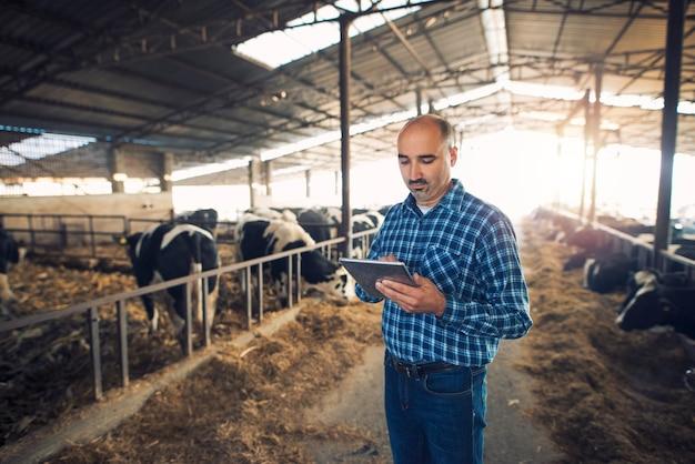 Портрет фермера средних лет, стоящего на коровьей ферме и использующего планшет Бесплатные Фотографии