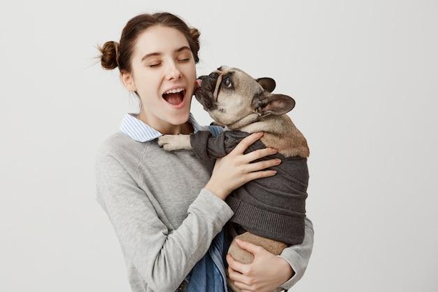 Портрет красивой женщины, в восторге и восторг от ее ребенка собака лижет ее лицо. счастливые выражения лица домохозяйки, с удовольствием с французским бульдогом, одетые в свитер. человеческие эмоции Бесплатные Фотографии