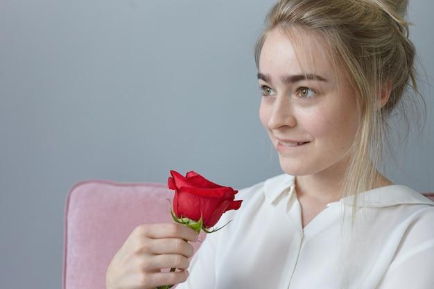 Портрет романтичной великолепной молодой женщины с собранными светлыми волосами, с игривым мечтательным выражением лица, кусающими губами, позирующей в помещении с красивой красной розой от таинственного поклонника. день святого валентина Бесплатные Фотографии
